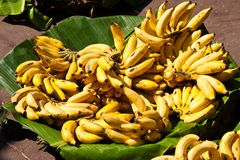 Bananas on a market Royalty Free Stock Images