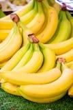 The bananas at the market display stall. Bananas at the market display stall royalty free stock photo