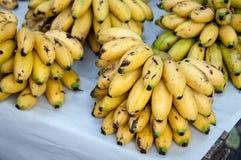 Bananas at the Market Stock Photography