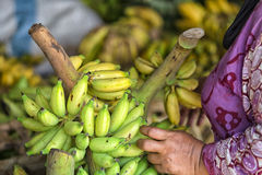 Bananas. On a marketplace in indonesia Stock Images