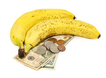 Bananas with money Royalty Free Stock Photos