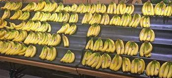 Bananas na exposição no mercado Imagens de Stock