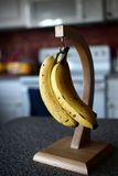 Bananas no gancho foto de stock royalty free