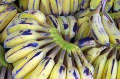 Bananas no suporte de fruto Imagem de Stock Royalty Free