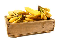 Bananas in an old box. On a white background Royalty Free Stock Photo
