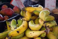 Bananas and other fruits are sold on the market Royalty Free Stock Photos