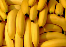 Bananas pile. Pile of fresh organic bananas on a market Stock Images