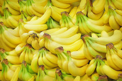 Bananas. Pile of bananas on a market Stock Images