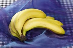 Bananas - popart. Some yellow bananas on a purple, marbleized background (like popart stock photography