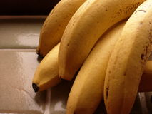 Bananas. Ripening on kitchen window sill Royalty Free Stock Images