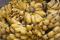 Bananas for Sale Royalty Free Stock Photo