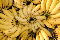 Bananas for Sale at the Market Stock Photography