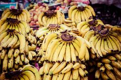 Bananas for Sale at the Market Royalty Free Stock Photo