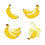 Bananas set. Vector Stock Photo
