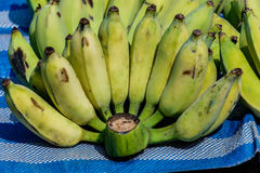 Bananas sold in local markets. thailand. Royalty Free Stock Photo