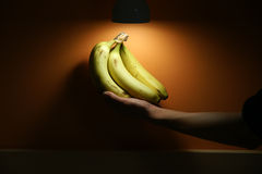 Bananas in spotlight. A hand of ripe bananas is held in the spotlight against an orange wall Stock Photography
