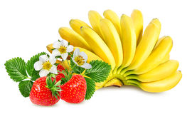 Bananas and strawberries isolated Royalty Free Stock Image