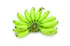 Bananas Unripe do bebê Foto de Stock Royalty Free