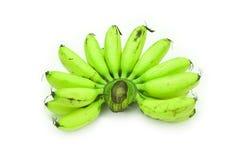 Bananas Unripe do bebê foto de stock royalty free