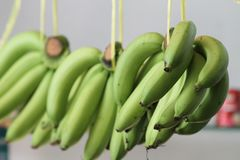 Bananas verdes Imagens de Stock