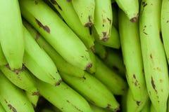 Bananas verdes Fotos de Stock Royalty Free