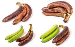 Bananas verdes e passados isoladas no fundo branco Grupo ou coleção Fotografia de Stock