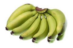 Bananas verdes isoladas imagem de stock