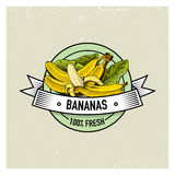 Bananas Vintage, hand drawn fresh fruits background, summer plants, vegetarian and organic citrus and other, engraved. Royalty Free Stock Images