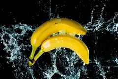 Bananas Water Splash royalty free stock photography