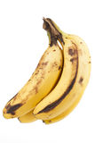 Bananas on white background Royalty Free Stock Image
