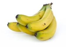 Bananas on white background Stock Image