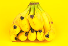 Bananas  on yellow. Stock Photography