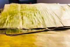 Bananbladet som används för förberedelsen av typisk venezuelan jul, besegrar hallaca Royaltyfri Fotografi