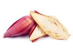 Bananblommor Royaltyfri Fotografi