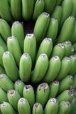 Banane lizenzfreie stockbilder