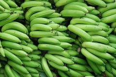 Banane Lizenzfreie Stockfotografie