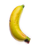 Banane photo stock