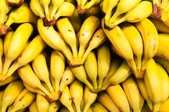 Banane al mercato Fotografia Stock