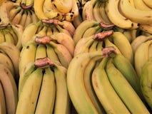 Banane alte vicine del fondo Fotografia Stock Libera da Diritti