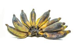 Banane auf Isolathintergrund Stockbild