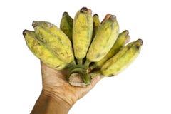 Banane auf Weiß Lizenzfreie Stockfotos