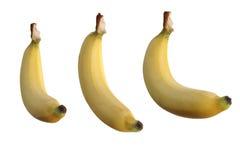 Banane auf weißem Hintergrund Stockfotografie