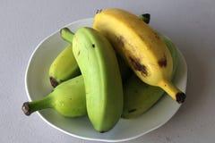 Banane che maturano in una ciotola Fotografia Stock