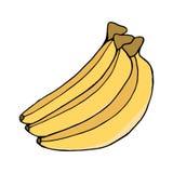 Banane colorée par trois croquis image d'isolement par vecteur Photographie stock
