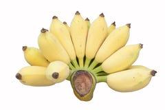 Banane con priorità bassa bianca Immagine Stock