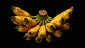 Banane cuite photographie stock