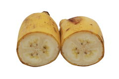 Banane cultivée Photo stock