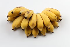 Banane cultivée Photo stock