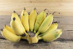 Banane cultivée sur un bois Photos libres de droits