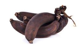 Banane défraîchie d'isolement sur le fond blanc Photos libres de droits